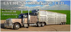 Trucking ad