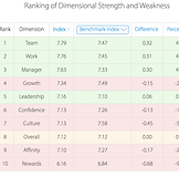 CusJo Ranking Of Dimensional Strenghts &