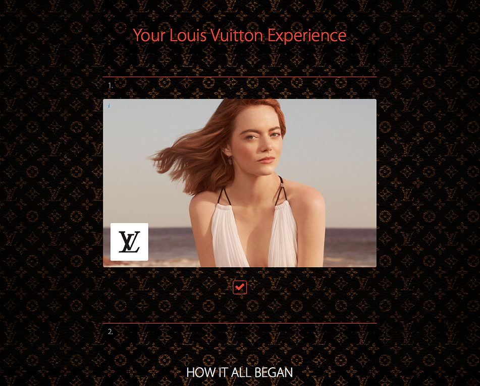 Louis Vuitton Experience Sample.png
