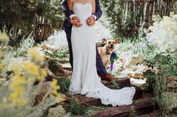 K+K Wedding_FirstLook-73