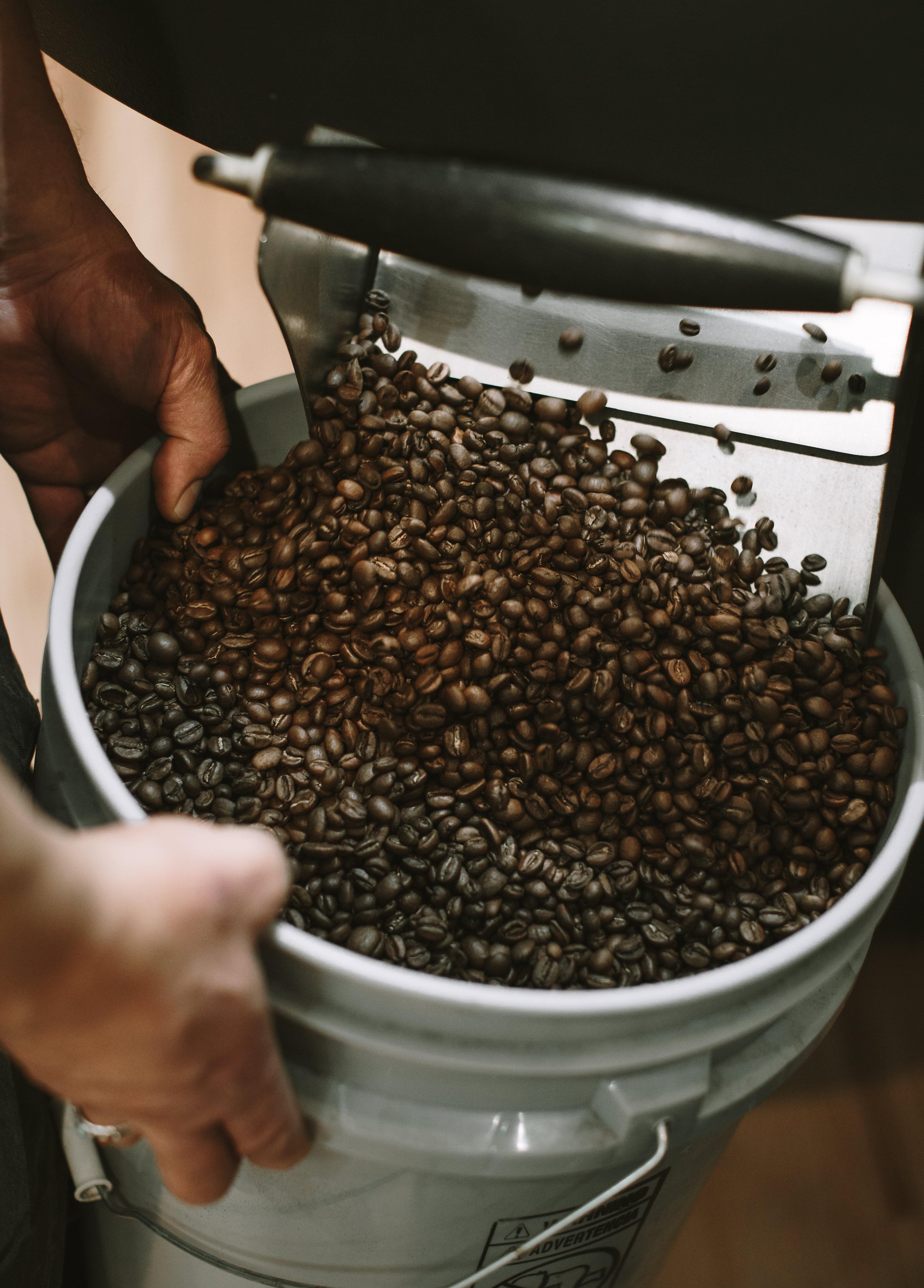 Cutbow-Coffee-22