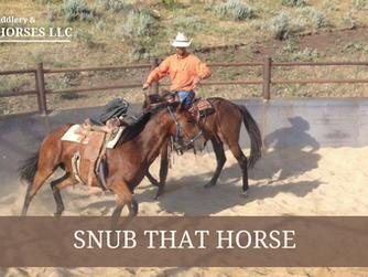 Snub That Horse
