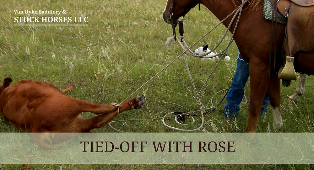 Tied-Off with Rose