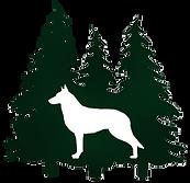 White swiss shepherd, berger blanc suisse, White Shepherds for sale, White shepherd puppies for sale, white swiss shepherds, white swiss shepherd puppies for sale, White Shepherd breeders,  u.s., america, washington
