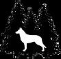 Berger Blanc Suisse, White Swiss Shepherd puppies, White Swiss Shepherds for sale, white shepherds for sale, white shepherd puppies for sale, white swiss shepherd breeders, U.S., America, united states, washington, north carolina