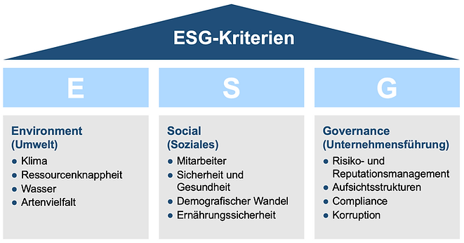 ESGKriterien.png