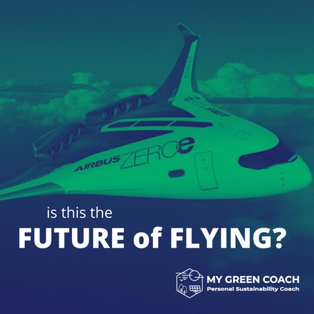 IS THIS THE FUTURE OF FLYING?