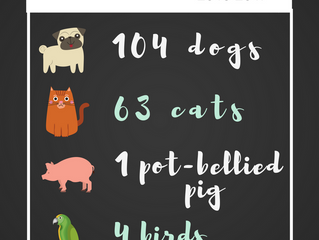 174 Pets Helped since 2015