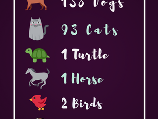 Total Animals Helped in 2018