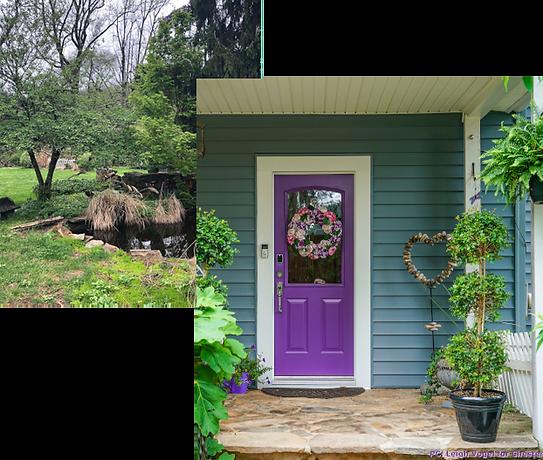 Front Door / Pond