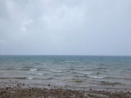 8/25・・・強風。