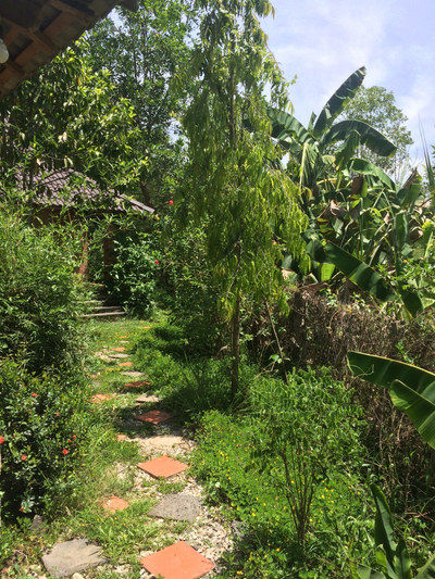#gate #lavieestbelle #yoga #meditation #expressivearts #vietnam #retreat #nature #forest #yoganidra #classicalyoga #vegan #vegetarian #relax #spirituality #community #karmastay #karmaschool #karmayoga #naturequest #musique #lifestyle #volunteering #gardening