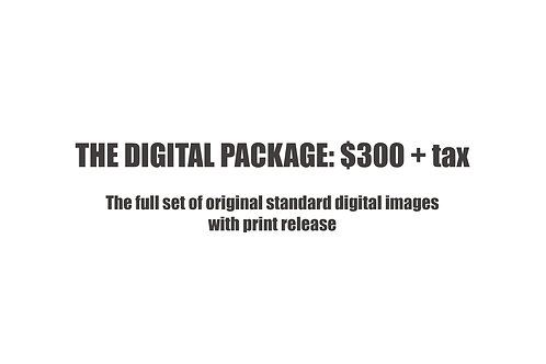 The Digital Photo Package $300