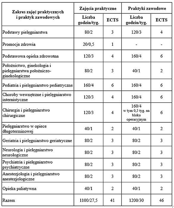 praktyki tabela 12-2020.jpg