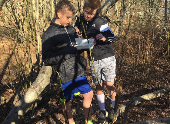 Trees support student success
