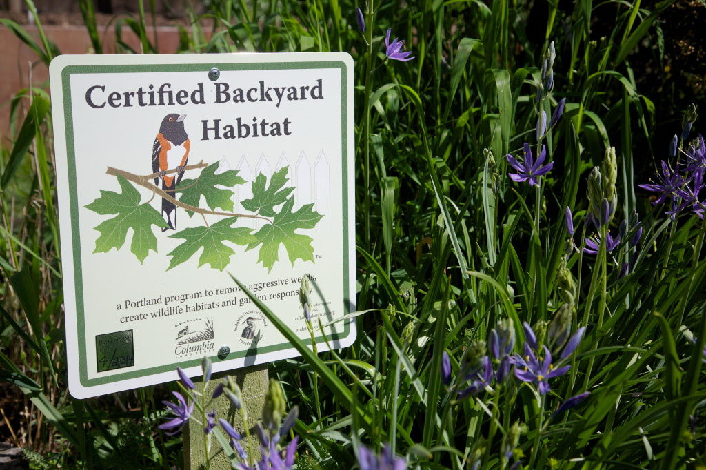 BACKYARD HABITAT CERTIFICATION