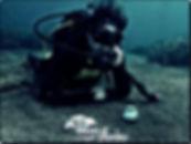 izmir-karaburun-tüplü-dalış-kursu-deneme-tanıtım-dalışı