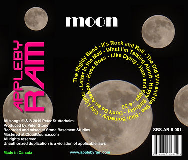 moon (back) cropped.jpg