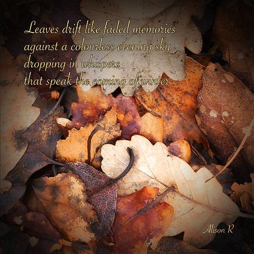 Leaves Drift