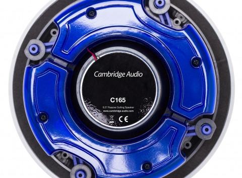 C165 rear IMG_9399.jpg