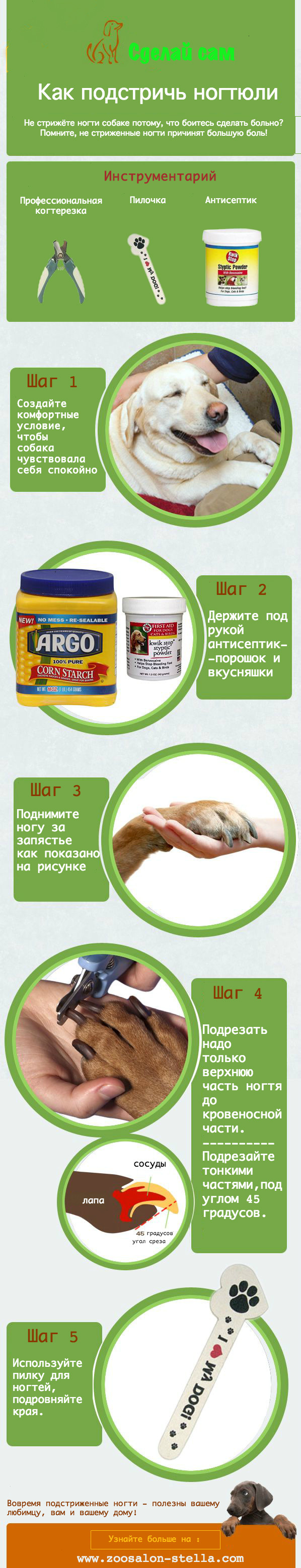 подстричь ногти собаке