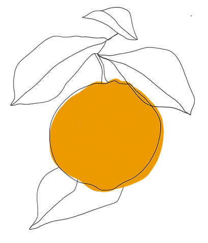 LEKKA_KAEK_Illustration_Orange_05-small.