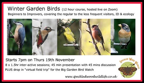 winter birds facebook event.png