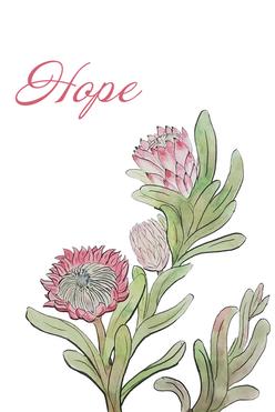 Protea Flowerr.png
