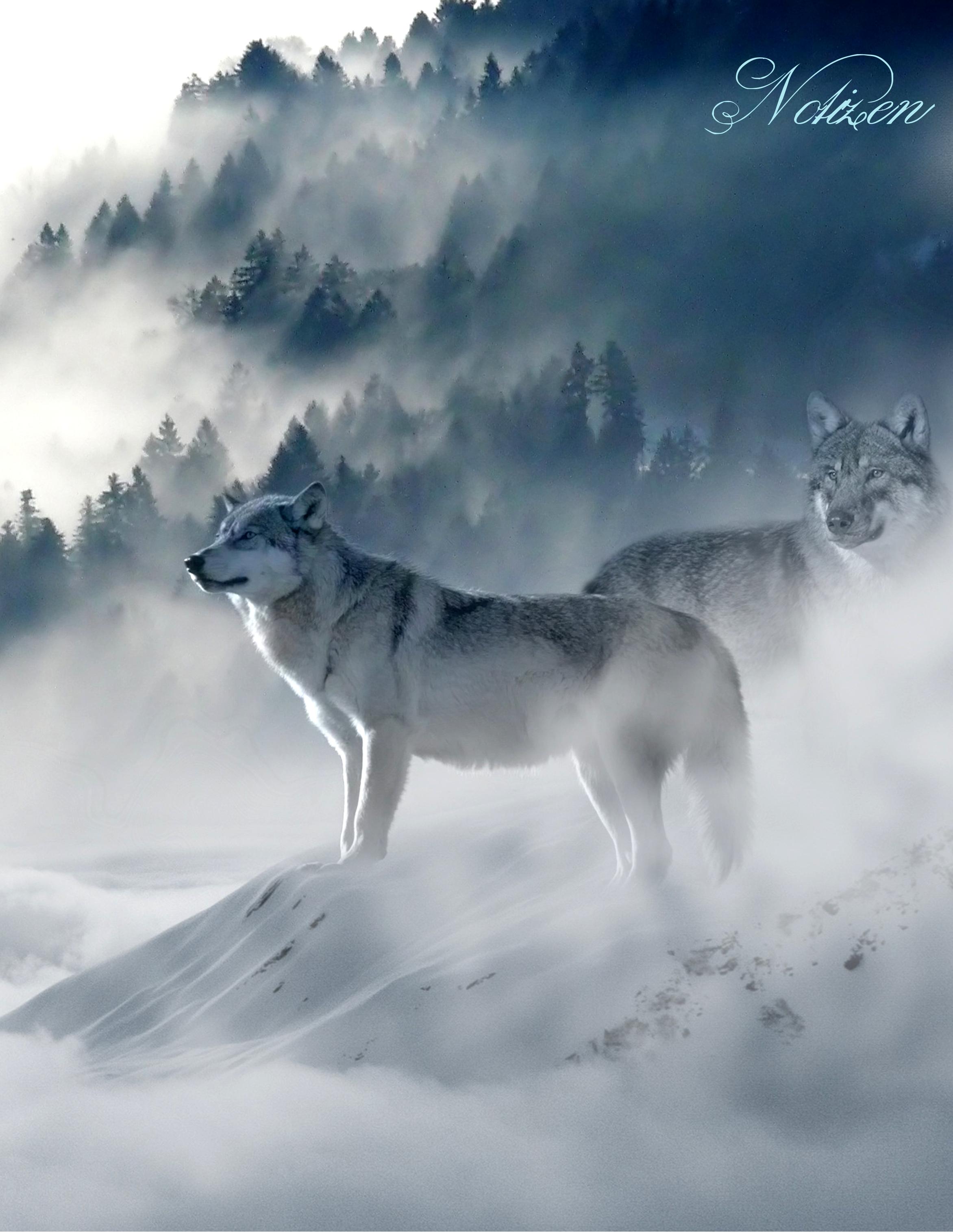 Fantasy Notizbuch 12: Wölfe im Nebel