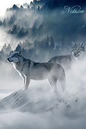 Das Fantasy Notizbuch 'Wölfe im Nebel' als schöne Geschenkidee