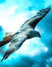 Das Fantasy Notizbuch 'Adler im Sturm' als schöne Geschenkidee