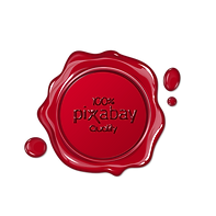 LMoonlight bei Pixabay