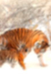 Das Fantasy Notizbuch 'Tiger im Schnee' als schöne Geschenkidee