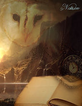 Das Fantasy Notizbuch Eulenmagie als schöne Geschenkidee