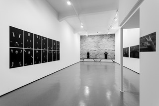 Exposição Adriana Barreto