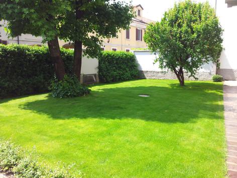Giardino con prato verde e alberi