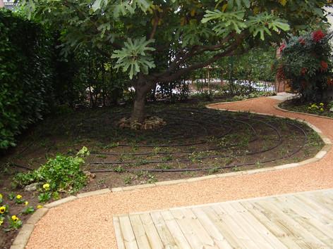 Irrigazione in vialetto