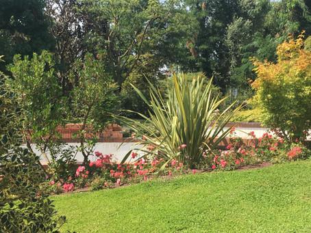 Il giardino arricchisce l'anima