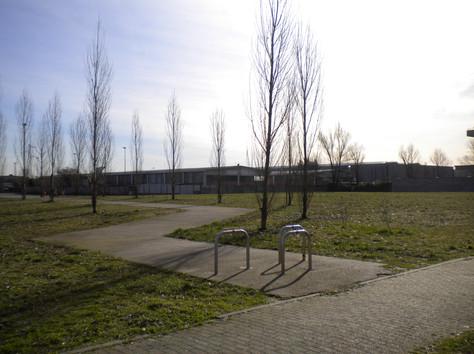 Stradina nel parco