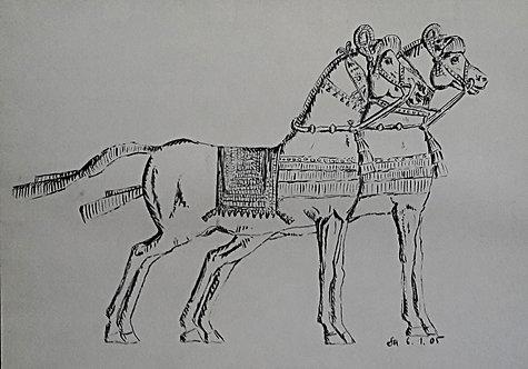 Kunst, Zeichnung, Pferde, Ägypten, St. Gallen, schwarz, weiss