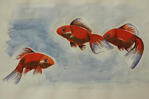 Kunst, Wasserfarbe, Zeichnung, St. Gallen, Goldfisch
