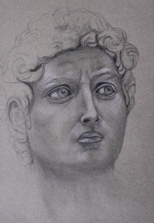 Männerporträt, David, Skizze, Kohle, Bleistift, Porträtmalerei, St. Gallen, Kunst, Bleistiftzeichnung, Zeichnung