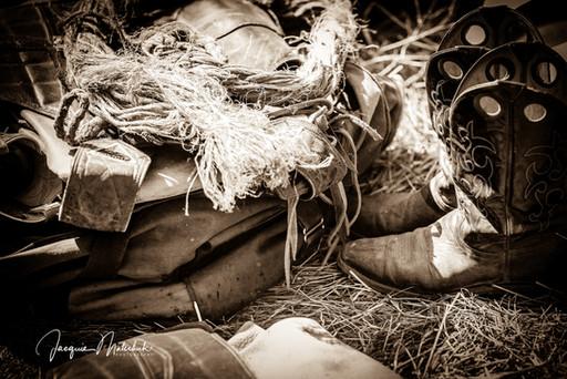 Jacquie Matechuk Photography