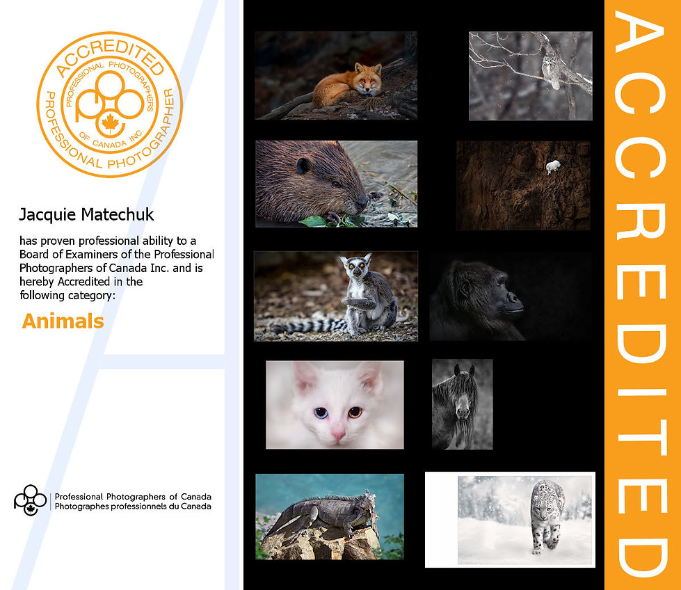 PPOC-Accredited Animals.jpg