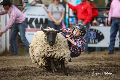 2018 Cochfrane Rodeo