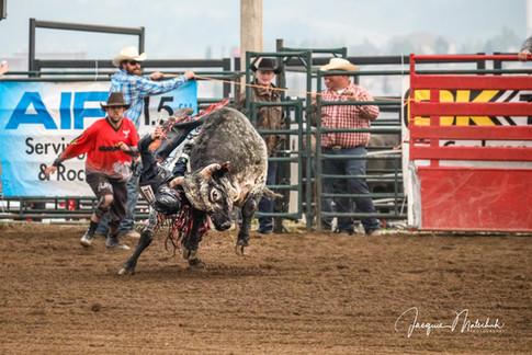 2018 Cochrane Classic Bullriding