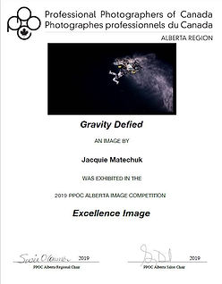 Gravity Defined Certificate - Regional.j
