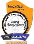 2020 BOA - Best in Class - Fine Art.png