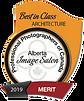 2019 - Best in Class - Merit.png