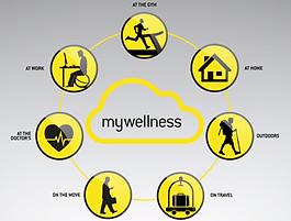 mywellness Übersicht.png